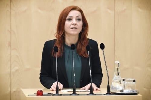 Ewa Ernst-Dziedzic