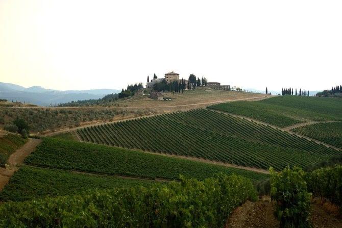 Landwirtschaft Italien