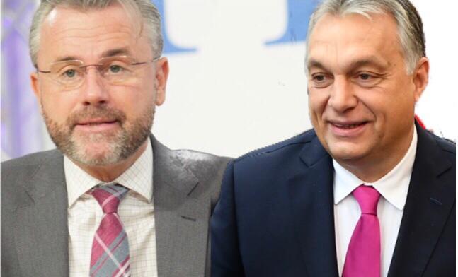 """""""Volkspartei demütigte Fidesz-Abgeordnete"""": Hofer zeigt Verständnis für Orbáns Austritt aus EVP"""